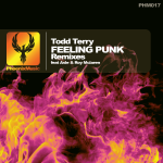 Todd Terry - Feeling Punk (Remixes)